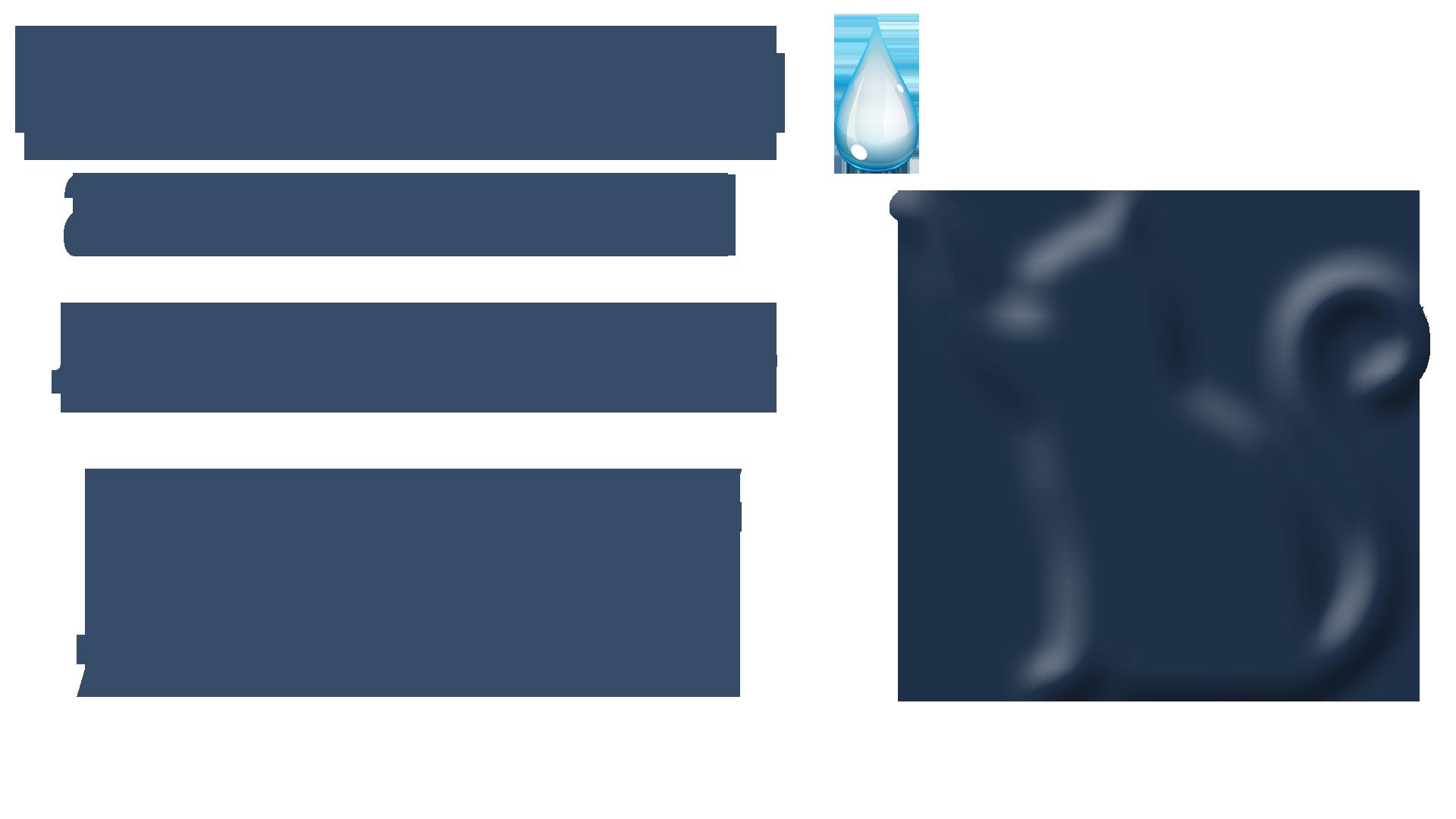DEZLIFE